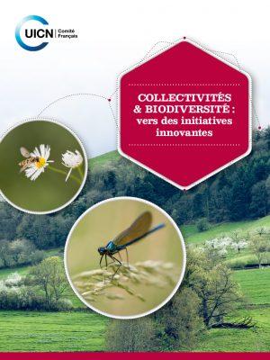 initiates-innovantes-PUBLICATION